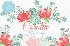 Coral Peonies.watercolor clipart by LABFcreations on @creativemarket