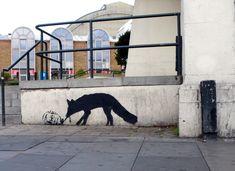 'Kentucky Fox'  London, 2009