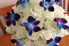 ivory rose and blue orchid corsage | Prestige Flowers - Wedding Flowers