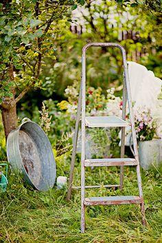 Vintage ladder & tub.