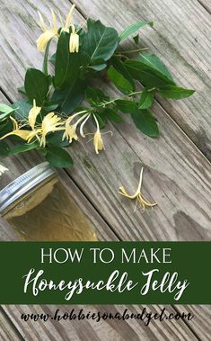 How to Make Honeysuckle Jelly – Hobbies on a Budget – Food: Veggie tables Honeysuckle Jelly, Jelly Recipes, Jam Recipes, Drink Recipes, Sweet Recipes, Jam And Jelly, Homemade Biscuits, Flower Food, Gardens