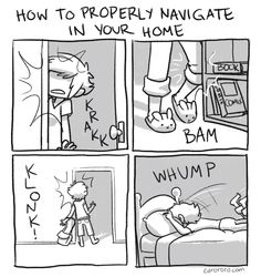 How to Properly Navigate in Your Home by Caro Ramsey (This is so me it's not even funny).