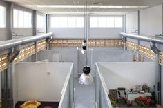 Freehand Arquitectura