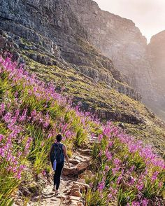 Hiking in South Africa Hiking Photography, Mountain Photography, Table Mountain, Mountain Hiking, Places Of Interest, Pilgrimage, Lonely Planet, Continents, South Africa