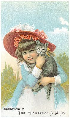 """Vintage Postcard:Compliments of the """"Domestic"""" S.M.Co. 