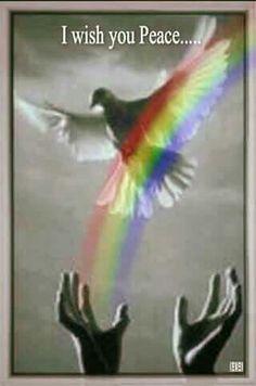 I wish you Peace ☮🕊 Peace On Earth, World Peace, I Wish You Enough, Give Peace A Chance, Age Of Aquarius, Peace Dove, Hippie Love, I Am Blessed, Gods Plan