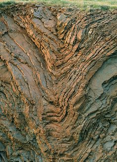 folded radiolarian chert What's beneath your grass-covered hills? by cocoi_m, via Flickr