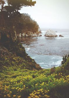 California coast, USA.
