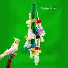 ide cadeau pour passionn d oiseaux