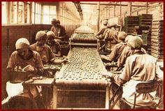 Old ancestry visit genealogy Scottish family history photograph image of a biscuit factory in Glasgow, Scotland Liverpool England, Liverpool Town, Liverpool History, England Uk, Local History, Women In History, British History, Family History, Ghost In The Machine