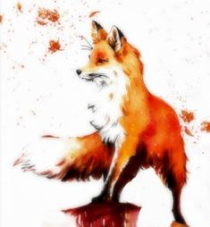 Beautiful Autumn Fox by Regal Mind Animal Sketches, Animal Drawings, Art Drawings, Watercolor Fox Tattoos, Watercolor Art, Fox Spirit, Spirit Animal, Fuchs Tattoo, Fox Painting