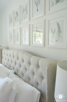Botanical Fern Gallery Wall in White Bedroom above Tufted Headboard