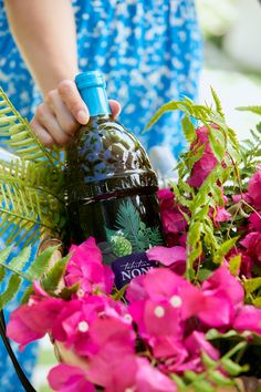 FACT: Tahitian Noni Juice is loaded with more than 275 phytonutrients, including vitamins, minerals and antioxidants. Just 1 oz, 2 x per day can boost your immune system response up to 30%. Get your bottle of Tahitian Noni Juice ordered today! Tahitian Noni, Noni Juice, Fiji Water Bottle, Immune System, Minerals, Christmas Bulbs, Vitamins, Holiday Decor, Christmas Light Bulbs