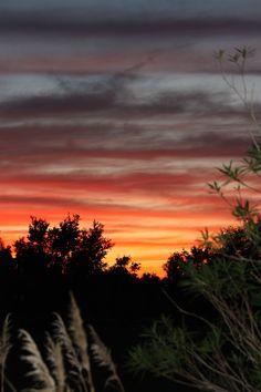 South Louisiana Sunsets #travel