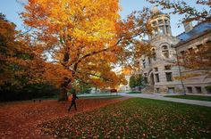 From our friends at IU  @iubloomington - Guess who @usatoday said is the most Instagrammed place in Indiana. That's right! Someone give us a high five!  Need proof? Click the link in our bio.  #iu #iubloomington #bloomington #indiana #indianauniversity #university #college #instagram #goviewyou