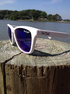 New polarized lenses launching this week