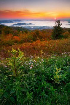 Sunrise, Shenandoah National Park, VA