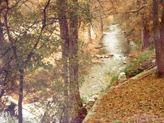 Fall in Hunt Texas, (a few years back) on the Guadalupe River (It's coming)    pic by Julie Marshall