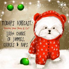 Today's forecast: chance of jammies, cookies & naps Sassy Quotes, Cute Quotes, Snow Quotes, Pretty Quotes, Girly Quotes, Funny Quotes, Christmas Quotes, Christmas Time, Merry Christmas