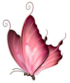 beautiful mariposa...