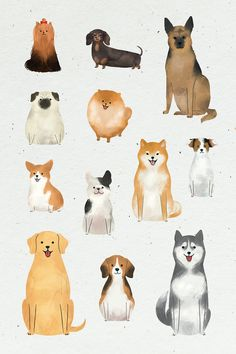 Friendly dog watercolor painting collection vector | premium image by rawpixel.com / nunny Art And Illustration, Cute Animal Illustration, Watercolor Illustration, Watercolor Art, Simple Watercolor, Watercolor Background, Watercolor Landscape, Watercolor Flowers, Animal Illustrations