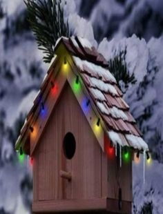 Adorable Bird House for Winter! Bird House Decorated with Christmas lights, covered in snow; Bird Cages, Bird Feeders, Outdoor Christmas, Christmas Lights, Christmas Bird, Merry Christmas, Christmas Garden, Holiday Lights, Country Christmas