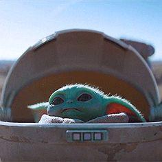 Star Wars Love, Star Wars Baby, Ahsoka Tano, Star Wars Rebels, Yoda Meme, Cute Wallpapers, Marvel, Nerdy, Cute Animals