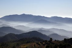 Foggy landscape by agafapaperiapunta on Creative Market