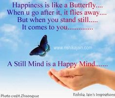 Happiness is like a Butterfly….When you go after it,  it flies away…. But when you stand still…..It comes to you…    A Still Mind is a Happy Mind.