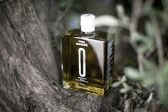 """TERRA OMIROS, the land of Homer. A tribute to the great Greek epic poet who attributed to olive oil the characterization: """"liquid gold'.  ANAGRAM design / Yiannis Xenakis"""