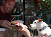 Pup knows his waffles! @Waffletruck