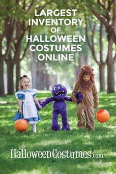 Shop the biggest and best selection of costumes at HalloweenCostumes.com!