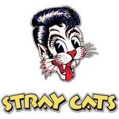 Stray Cats Best Sellers  | Patch Set | Shop the Stray Cats Official Store