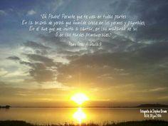 Aum Om Frases Padre Cesar Davila Aea