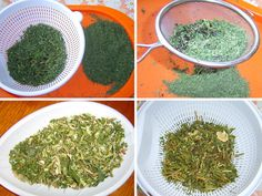 Preserves, How To Dry Basil, Pesto, Food To Make, Herbalism, Korn, Spices, Cooking Recipes, Yummy Food