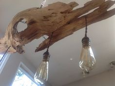 Cypress Tree Chandelier Ceiling Light Nautical by MidCenturyRewind