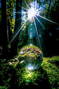 I had some fun with the glasball & the sunlight. The forest is a perfect contrast for this abstract shot.