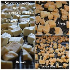 Survival food – how to dehydrate cheese and how to use it