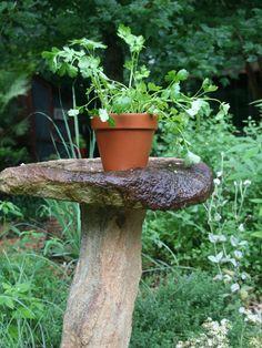 Growing Herbs & Veggies in part Shade