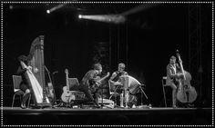 Herbert Pixner Projekt | Photo © Irmi Sinnesbichler Third, Saints, Concert, Boyfriends, Projects, Concerts