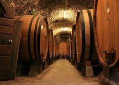tuscany-wine-cellar-475x339