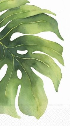 Design Design Oasis Flower Leaf Guest Towel / Buffet Napkin, 15 Pack Pack) by Design Design. Art Watercolor, Watercolor Leaves, Guache, Botanical Art, Painting Inspiration, Design Inspiration, Painting & Drawing, Illustrations, Drawings