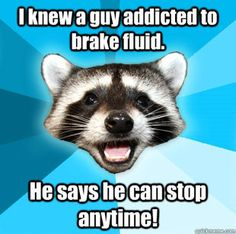 Lame Pun Coon. Love these.