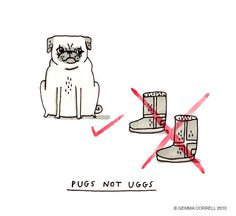 PUGS...NOT UGGS!! I dare say I concur