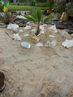 Beach Backyard Ideas who wouldnt want an adult sand box in their backyard care of schmidt Backyard Beach Love The Palm Tree In The Middle And Seashells Around