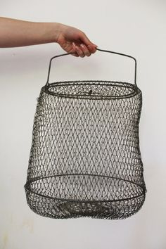Pinterest the world s catalog of ideas for Fish wire basket