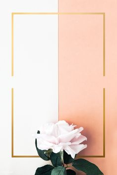 Flower Background Wallpaper, Flower Phone Wallpaper, Framed Wallpaper, Cute Wallpaper Backgrounds, Pretty Wallpapers, Flower Backgrounds, Background Patterns, Star Wallpaper, Nail Designs Easy Diy