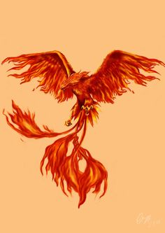 Father Son Tattoo, Tattoo For Son, Tattoo On, Body Art Tattoos, Phoenix Bird Tattoos, Phoenix Tattoo Design, Phoenix Images, Phoenix Art, Fantasy Creatures