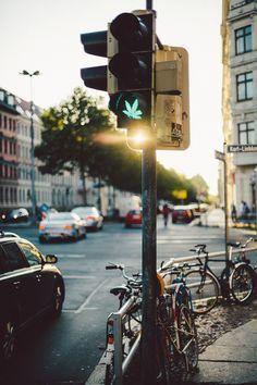 Photography Swag Tumblr Dope Marijuana Cannabis Kush Drug Plant
