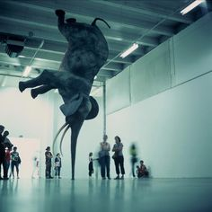 Daniel Firman, Wursa à 18 000 km de la terre, 2006-2008 © Courtesy Galerie Perrotin, Paris